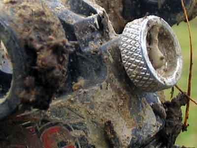 Muddy Romic Shock (Detail View)